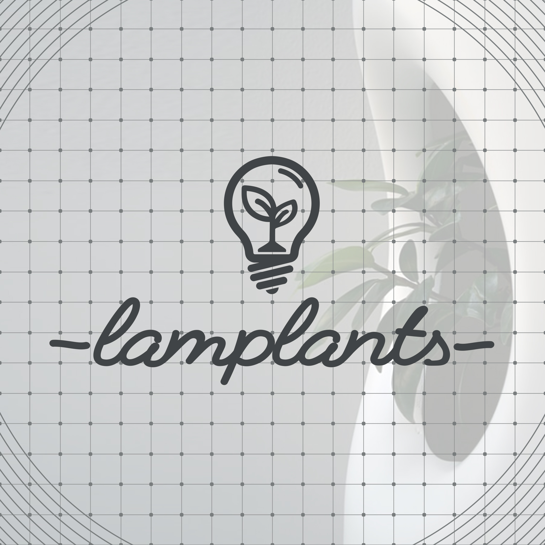 COVER lamplants