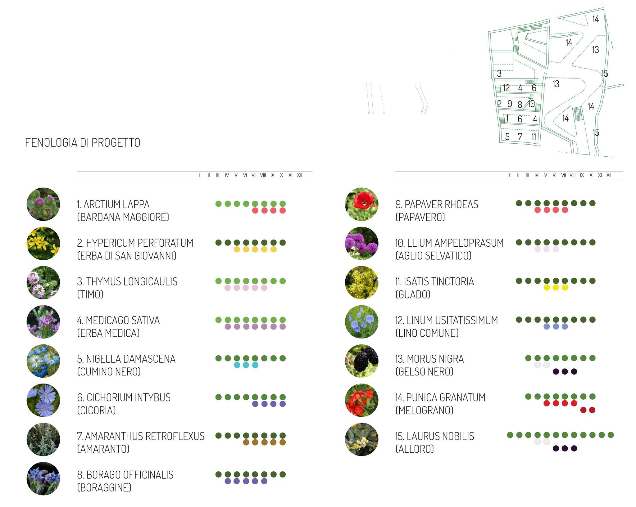 la città dei 100 giardini