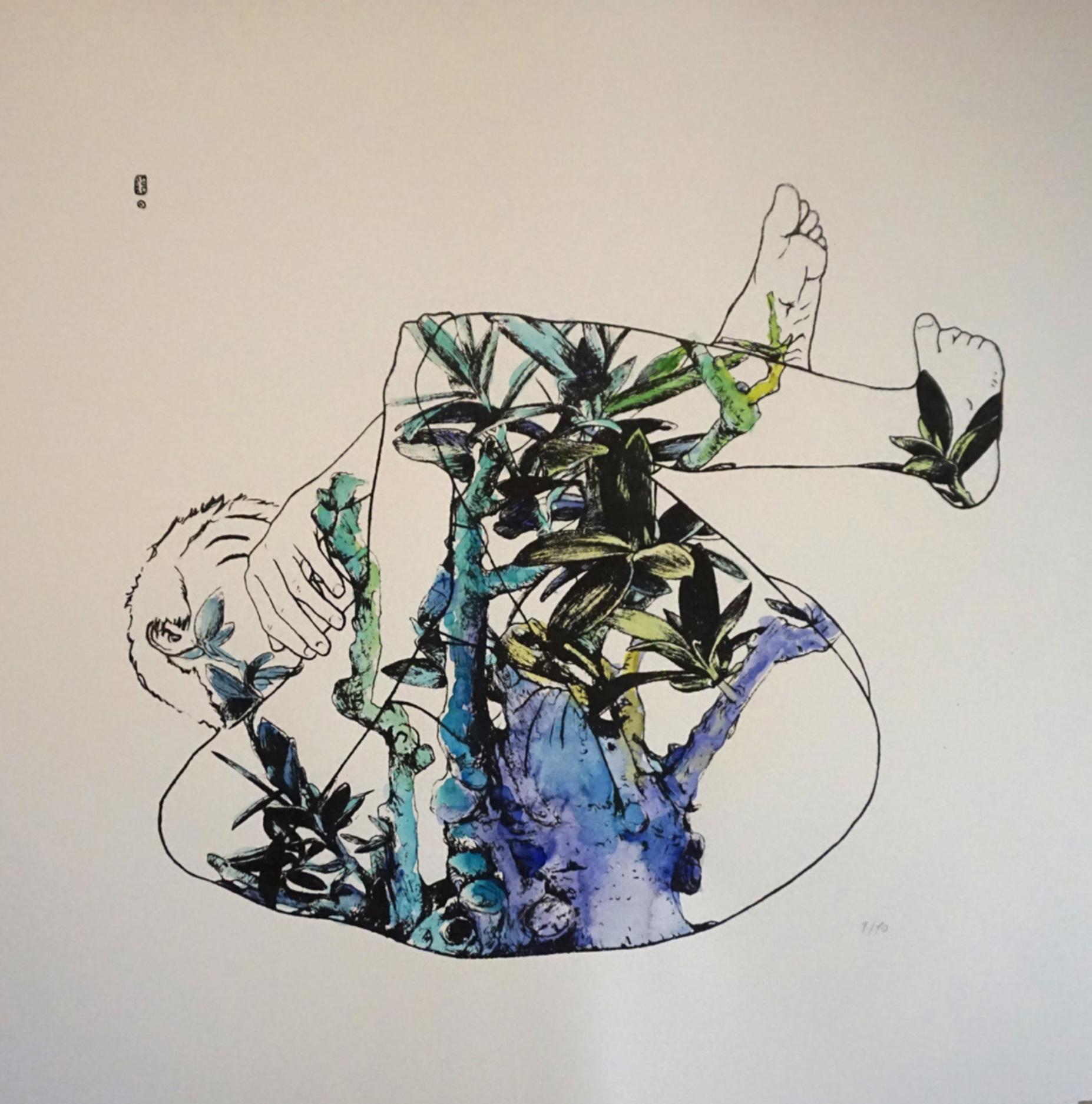 lula goce nature2