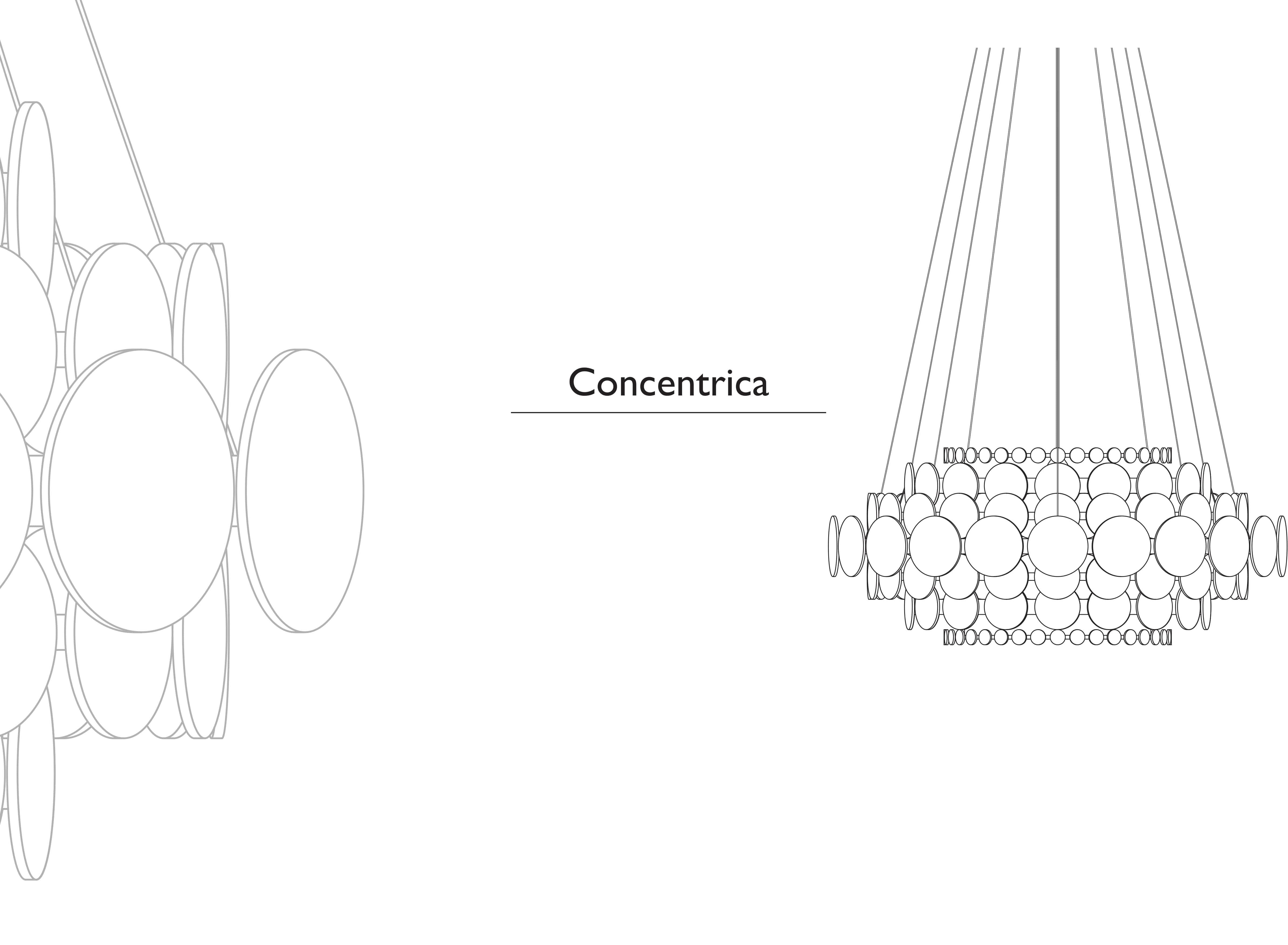 concentrica 5-min
